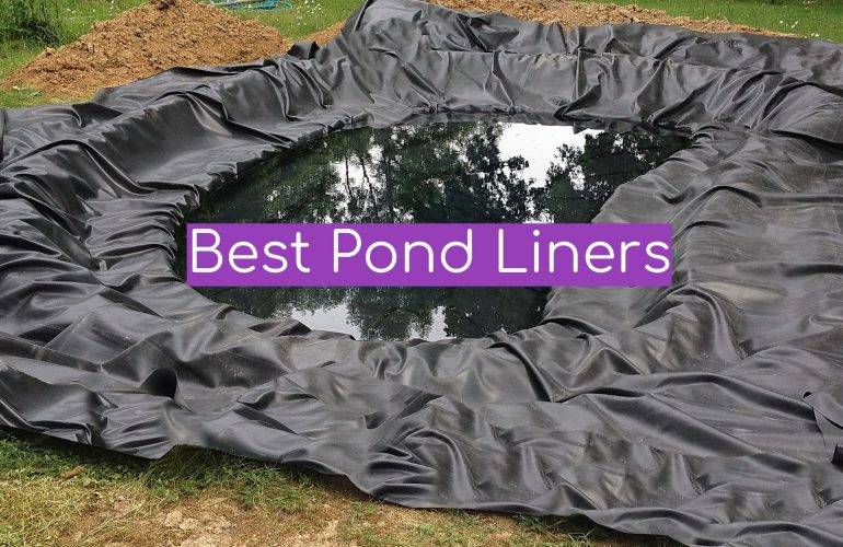 5 Best Pond Liners